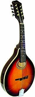 Best gold tone mandolin Reviews