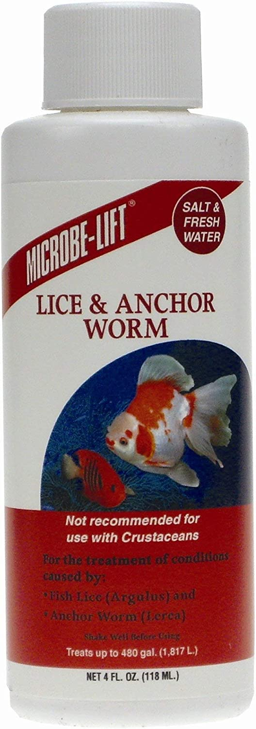 Lice and Anchor Worm Fish Health