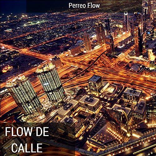 Perreo Flow