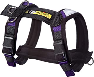 urban trail dog harness