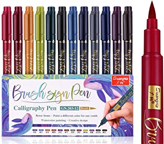 DSstyles Metallic Marker Pens,12 Assorted Colours,Calligraphy Sketch Brush Draw Hand Account Colour Pen, Capital Letters