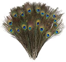 DECORA 100 Pieces Real Natural Peacock Feathers for Craft Halloween Costume Bridesmaid Corsage Christmas Wreath and Home D...