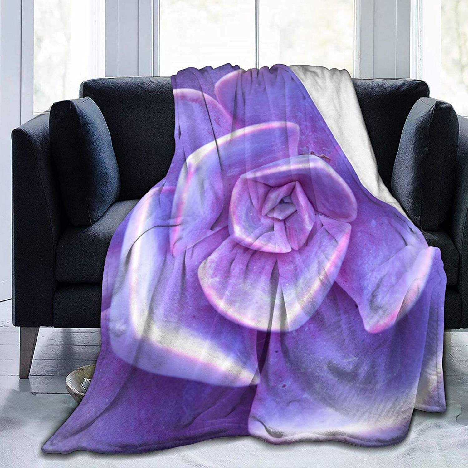 Throw Blankets Bed Purple Clearance SALE Limited time Flower NEW before selling Plus Microfiber Cactus