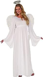 Unisex Child Angel Dress and Halo Value Costume, Multi, Standard