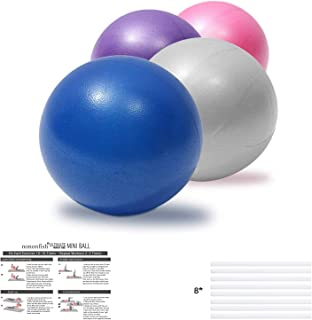 nononfish Pilates Ball 9 Inch Small Exercise Ball for Balance, Stability, Yoga, Barre, Physical Therapy, Stretching, Home ...