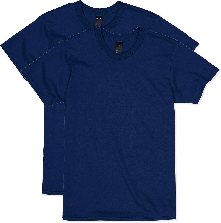 Hanes Men's Perfect-T Short Sleeve T-shirt (2-pack)
