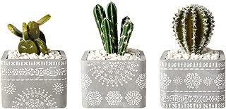 T4U 9.2 CM Maceta Suculenta de Cemento y Bandeja de Bambú, Jardinera de Hormigón Planta de Cactus Contenedor de Hierbas para Jardinería Decoración Regalo para Cumpleaños o Boda, Conjunto de 3