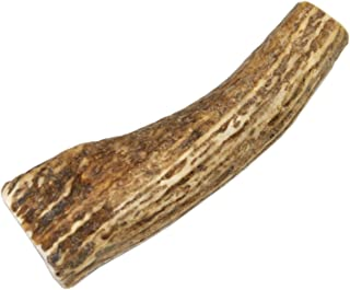 Small, Whole, Single Pack – Grade A Premium Elk Antler Dog Chew for 10 to 30 lb Dogs – Naturally shed from Wild elk – No Mess, No Odor – Made in The USA