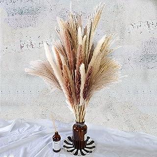 Total 60 Pcs   15 Pcs White Pampas & 15 Pcs Brown Pampas & 30 Pcs Reed Grass/Natural Dried Pampas Grass for Flower Arrange...
