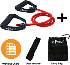 FITSY® Toning Tube Resistance Band + Door Anchor + Carry Pouch + Workout Chart