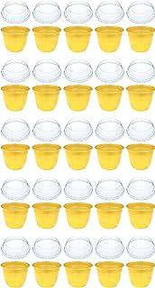レンジ対応 日本製 フタ付 デザートカップ プリンカップ 耐熱 ゼリーカップ プラスチック製 25個 セット GLD680