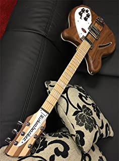 RICKENBACKER Deluxe Thinline Hollowbody - Boya de pesca (360 W)