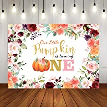 Little Princess 1st Birthday Pumpkin Backdrop Floral Princess Baby Girl First Birthday Party Photography Background Pumpkin Theme Birthday Decorations Cake Table Photo Booth Props 7x5ft Vinyl
