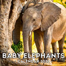 Baby Elephants Calendar 2022: 16-Month Calendar, Cute Gift Idea For Baby Elephant Lovers, Women & Men