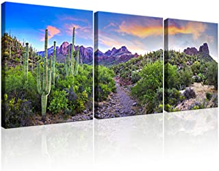 KLVOS 3 Piece Tropical Plants Canvas Wall Art Saguaros in Sonoran Desert Arizona Picture Print on Canvas Landscape Modern ...