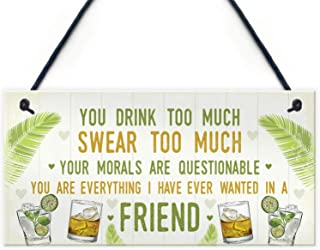 "Losea You are Drink Too Much Swear Too Much Friend Rustic Wood Hanging Sign Decorative Wall Decor 5"" x 10"""