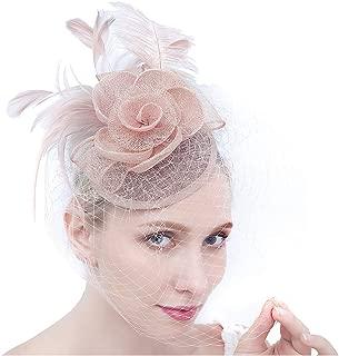 Tea Party Fascinators Pillbox Church Hats for Women Flower Feather Veil Headband Hair Clip