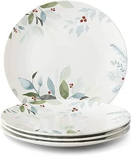 Best pineberry dinner plates Reviews