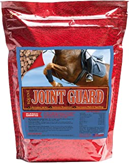 Equine Joint Guard - Joint Supplement for Horses