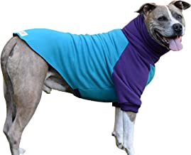 Tooth & Honey Dog Sweater/Pitbull/Large Dog/French Bulldog/Colorblock Sweatshirt/Pullover