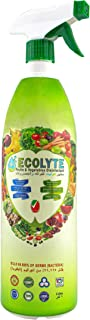 Ecolyte Disinfectant Food Spray and Food Sanitizer, Veggie Wash Organic Fruits & Vegetables Wash- 100% Natural Healthy & S...