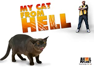 My Cat From Hell Season 7