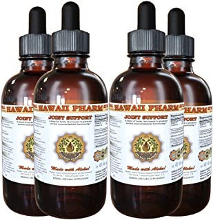 Joint Care Liquid Extract, Organic or Wild Harvested Ginger Tincture Supplement 4x4 oz