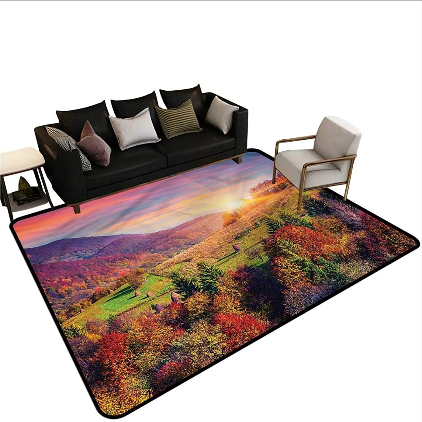 Nature,Front Mat Home Decorative Carpet 60