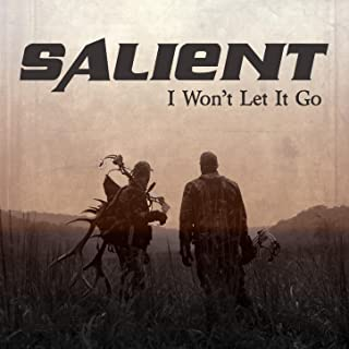 I Won't Let It Go - Single