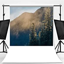 Fir Forest Shrouded in Fog in Winter Photography Backdrop,113736 for Photo Studio,Flannelette:6x10ft