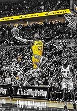 big lebron james poster
