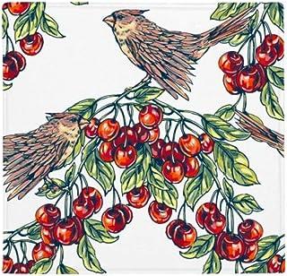 DIYthinker Alfombrilla Antideslizante para pájaros de Fruta, Verde, para el hogar, Cocina, Puerta, 80 cm, Regalo