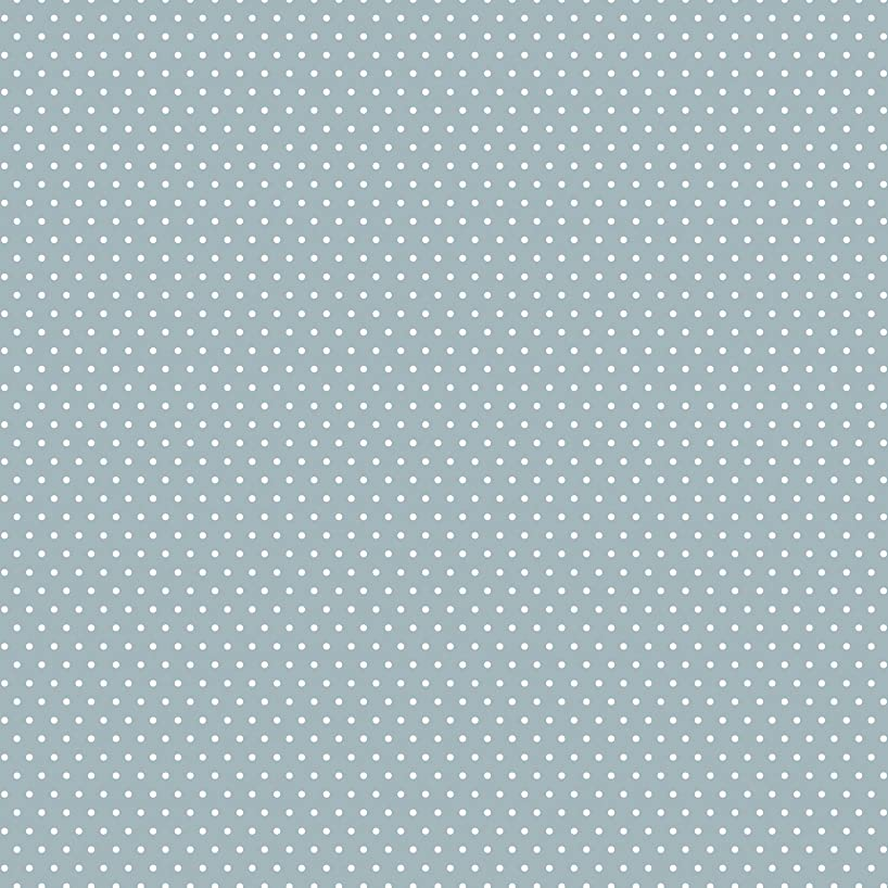 American Crafts Core'dinations 12 Pack of 12 x 12 Inch Patterned Paper Grey Small Dot,