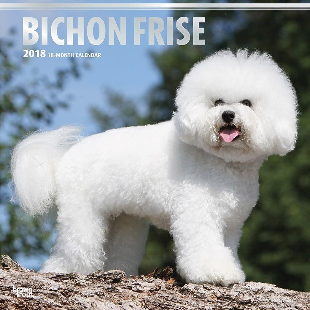 タイプライター傷つける流体Bichon Frise 2018 Calendar