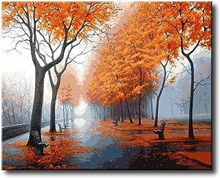 Framed Canvas pintura por n/úmero kits shukqueen DIY de pintura al /óleo acr/ílico painting-colorful del adulto Gato 16/x 20/pulgadas