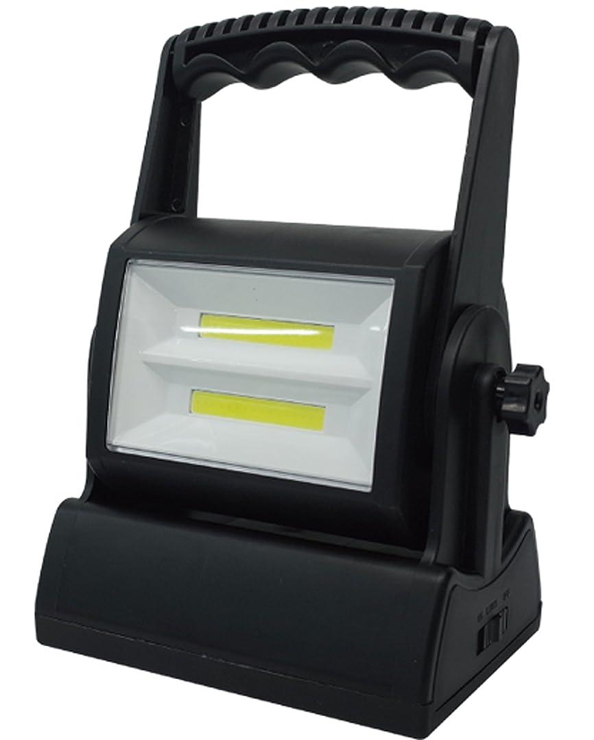 葉を拾うチャップ女の子強力発光 高輝度 2段配列 面発光 COB ブライト 作業用 LED ライト MEL-82