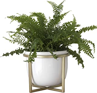Ceramic Flower Plant Pot with Stand - 6.7 Inch White Indoor Planter Pot with Gold Metal Stand for Herbs Orchids Cacti Succulents