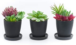 Succulent Planter Pots - Small Ceramic Containers, Cactus Planters, Flower Pots with Drainage Hole, Set of 3pc Black Round Mini Planter Set