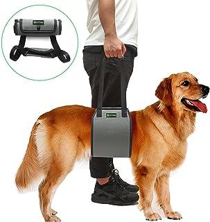 RockPet Soporte para Perros con Manija para la Ayuda Canina, Aprobado por los Veterinarios. Arnés para Levantar Perros Durante la Rehabilitación (L,Gris)