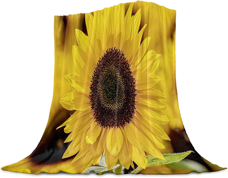 SODIKA Manufacturer OFFicial shop Fleece Blanket Plush Throw Soft Ranking TOP8 M Super Lightweight Fuzzy