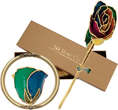 Long Stem Dipped 24K Gold Trim Rainbow Genuine Rose in Gift Box- El tallo Largo