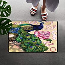 Peacock Chair Mats Door Mats, Fantasy Composition with Woman and Peafowl in Watercolor Artwork Bath Mats Quick Dry with Non-Slip Back, 23