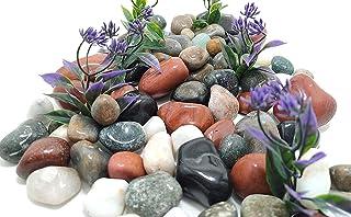 Schmick Natural River Stones for Fish Tank, Aquarium, Fountain, Table, Decorative Pebbles and Vase Fillers - Pebbles Stone...