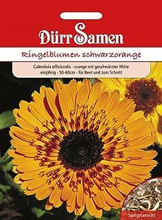Dürr-Samen Ringelblumen schwarzorange