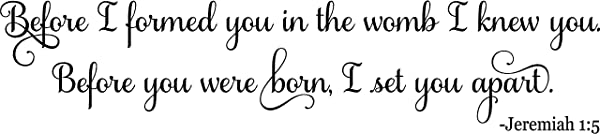 48 X11 Before I Formed You In The Womb I Knew You Before You Were Born I Set You Apart Jeremiah 1 5 Bible Verse Scripture Christian Wall Decal Sticker Art Home D Cor Baby Nursery