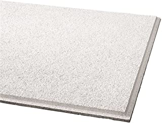 Armstrong BPGR584B Acoustical Ceiling Panel 584B Cirrus Humiguard Plus Angled Tegular, 12 Per Case, 51