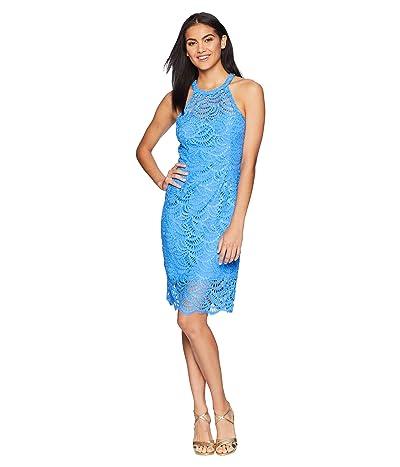 Lilly Pulitzer Kenna Halter Dress (Bennet Blue Scalloped Fan Lace) Women
