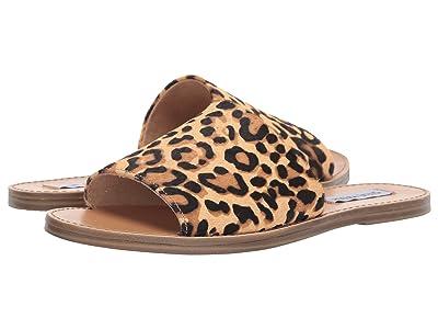 Steve Madden Gracel Flat Sandal (Leopard) Women
