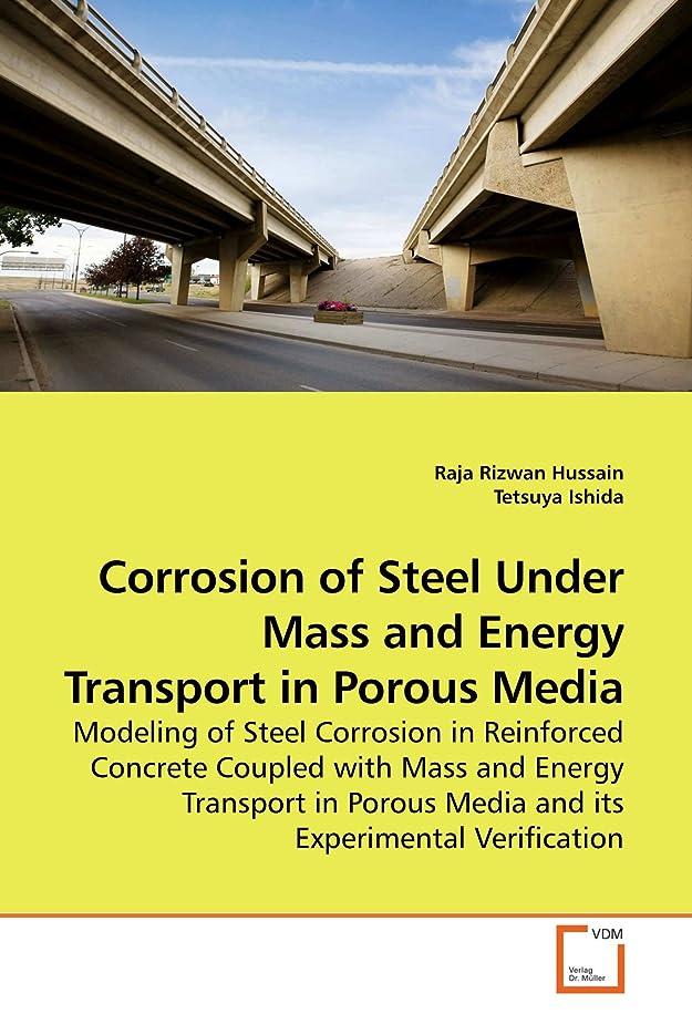 ピザモンク採用Corrosion of Steel Under Mass and Energy Transport in Porous Media