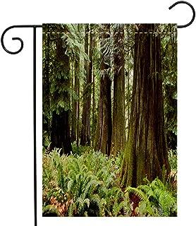 BEIVIVI Creative Home Garden Flag MacMillan Provincial Park Cathedral Grove Vancouver Island Garden Flag Waterproof for Party Holiday Home Garden Decor